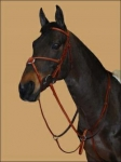 Edgewood Figure Eight Bridle