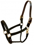 Walsh Nylon Halter with Breakaway leather crown